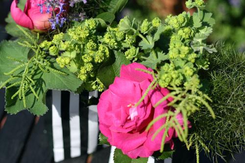 Garten Juni 2013 039